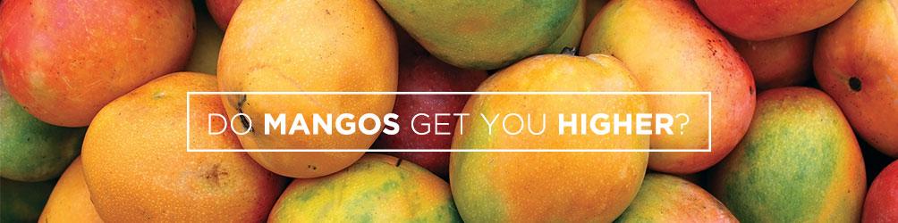 do mangos get you higher